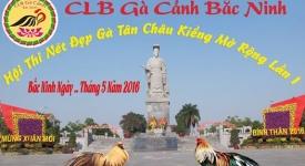 CLB gà cảnh Bắc Ninh tổ chức hội thi gà đẹp