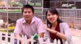 VTC14 – Trang trại gà tre Tân Châu tiêu biểu lớn nhất Việt Nam